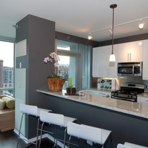 123-south-green-emerald-west-loop-chicago-condos-2