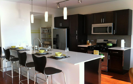 4-1225-north-wells-old-town-condos-chicago-kitchen
